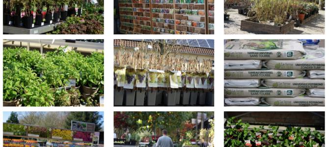 Livraisons possibles par la jardinerie de la Ferme Nos Pilifs pendant le confinement.
