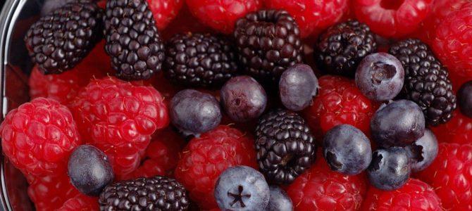 Samedi 7/03 à la Ferme Nos Pilifs : Culture des petits fruits rouges chez soi